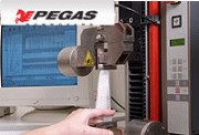 Pegas received decision investment incentives