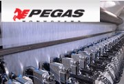 Pegas: Lentex doesn't want to buy 43% stake at Pegas Nonvowens