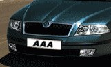 AAA Auto Group N.V. reports its 2012 results
