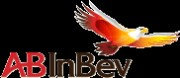 AB INBEV: 1Q11 likely to show strong pricing power again